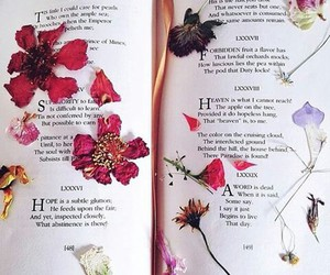 flower and book image