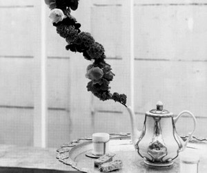 flowers, tea, and black and white image