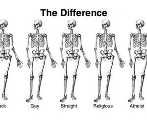 human, difference, and gay image