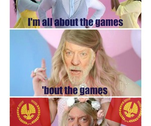 thg, the hunger games, and funny image