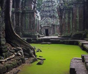 Cambodia, Temple, and ta prohm image