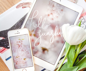 flowers, fashion, and girly image