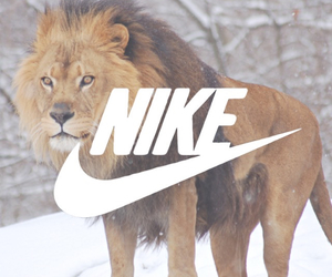 nike, lion, and wallpaper image