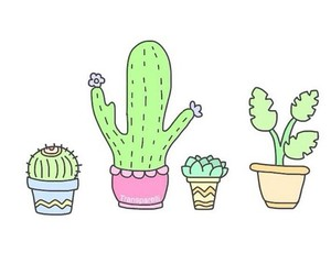 cactuses, overlay, and cute image
