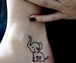 elephant and tattoo image