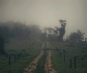 dirt, fog, and road image