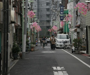 japan, flowers, and street image