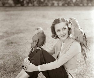 1930s, actresses, and birds image