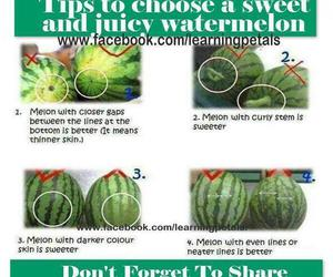 fruit, juicy, and tips image