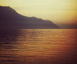 golden, nature, and water image