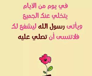 arabic, egypt, and islamic image