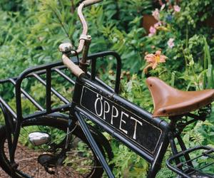vintage, bike, and garden image