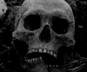 anatomy, dark, and art image