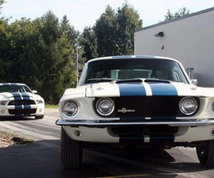 cars and Shelby image
