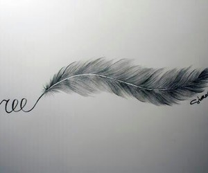 free, feather, and drawing image