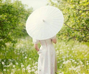 flowers, beautiful, and parasol image