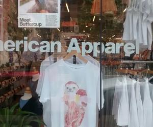 american, american apparel, and apparel image