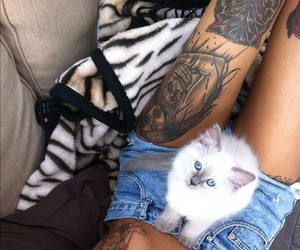 cat, tattoo, and girl image