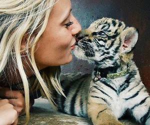 cute, baby, and animal image