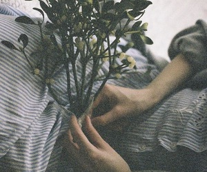 vintage, flowers, and grunge image