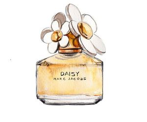 perfume, daisy, and flowers image