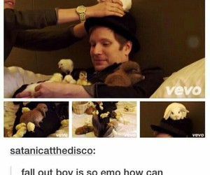 fall out boy, funny, and band image