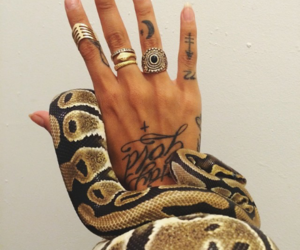 snake, tattoo, and nails image