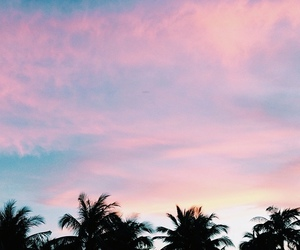clouds, palmtrees, and sky image