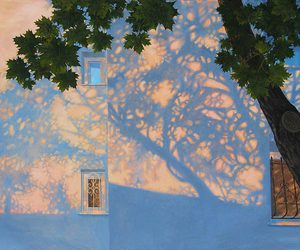 tree, art, and shadow image