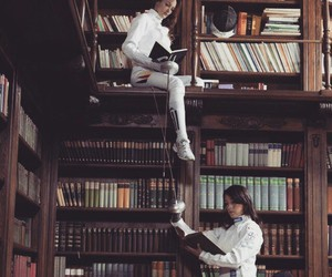 books and fencing image
