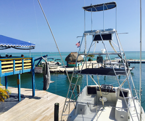 beautiful, blue sea, and money image