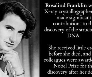 rosalind franklin, dna discovery, and x-ray crystallographer image
