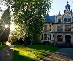 spring, university of washington, and uw image