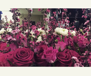 florist, flowers, and ranunculus image