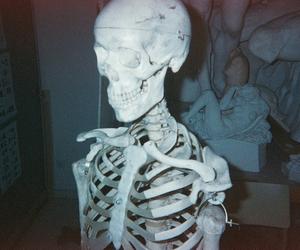 skeleton, bones, and indie image