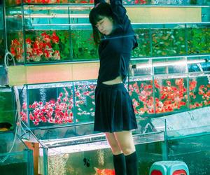 girl and fish image
