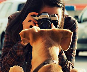 dog, girl, and photography image