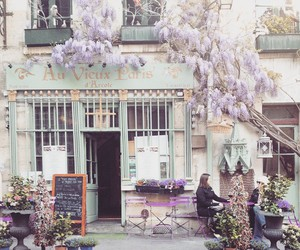 cafe, flowers, and lilac image