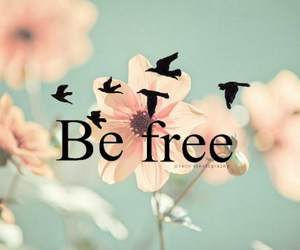 tumblr, imagen, and befree image