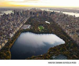 builds, Central Park, and city image