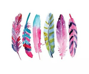 feather, art, and pink image