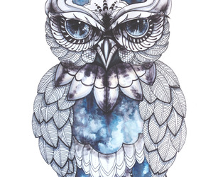 owl, art, and blue image