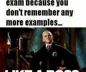 harry potter, draco malfoy, and funny image
