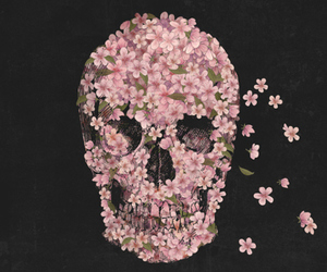 flowers, skull, and pink image