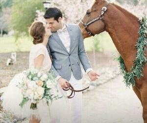 beautiful, wedding, and horse image