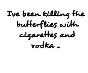butterflies, cigarettes, and vodka image