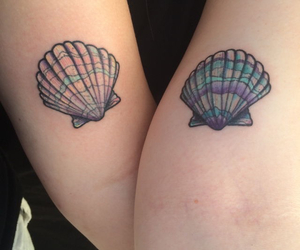 black, colour, and shells image