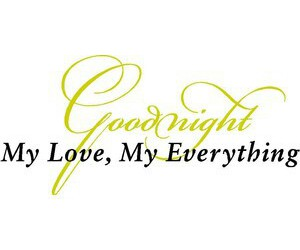 goodnight, love, and love quotes image