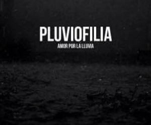 lluvia, pluviofilia, and frases image