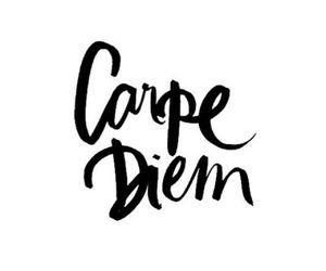 quotes, carpe diem, and carpediem image